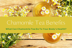 10 Chamomile Tea Benefits Important For Your Body's Health -yourself on update